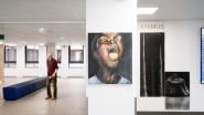 HLN – 60 lokale kunstenaars exposeren 170 werken